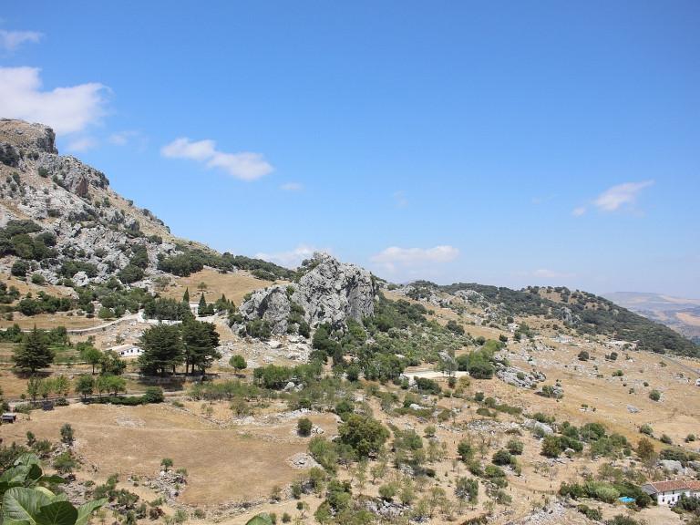 Medina-Algarrobo