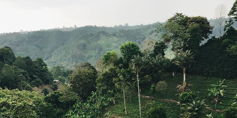 La Ruta Colombia by BKOOL